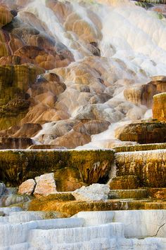 Mammoth Hot Springs, Yellowstone National Park, Wyoming, United States.