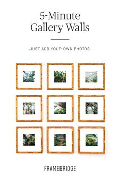 The most popular gallery walls on Pinterest. Just add your own photos. Design in 5 minutes. Hang in 10. Picture Frames Online, Gallery Walls, Custom Framing, Online Art, Charlottesville, Projects To Try, Wall Decor, Editor, Popular