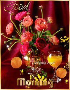 Good Morning Rose Gif, Good Morning Sister, Good Morning Nature, Good Morning Happy Sunday, Good Morning World, Good Morning Flowers, Sunday Gif, Beautiful Morning, Good Morning Greetings Images