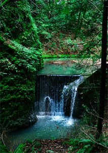Napa Hiking: Archer Taylor Preserve Hiking & Hiking Trail   Devil Wells Water Falls  Your Guide to Hikes and Hiking in Napa Valley & Bay Are...