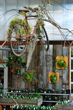 I dream of bicycles flying in gardens @ FloraGrubbGarden in  San Francisco.