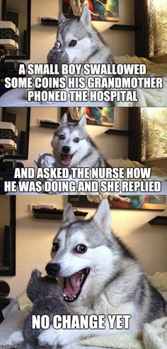 Bad Pun Dog | A SMALL BOY SWALLOWED SOME COINS HIS GRANDMOTHER PHONED THE HOSPITAL AND ASKED THE NURSE HOW HE WAS DOING AND SHE REPLIED NO CHANGE YET | image tagged in memes,bad pun dog | made w/ Imgflip meme maker