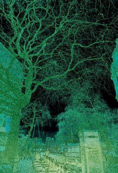 Image for Nature's urban dialog Northern Lights, My Arts, Urban, Fine Art, Nature, Travel, Image, Naturaleza, Viajes