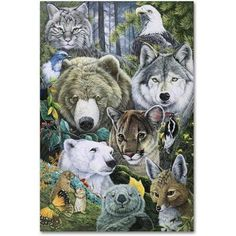 Trademark Fine Art 'North America's Endangered' Canvas Art by Jenny Newland, Size: 12 x 19, Assorted