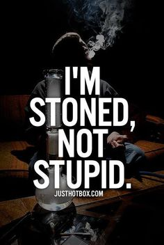 We need to fix the stigma behind the word stoner, we are not lazy ass people that don't want to be productive, we love cannabis and live our lives while enjoying cannabis!