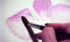 watercolor tips for flowers