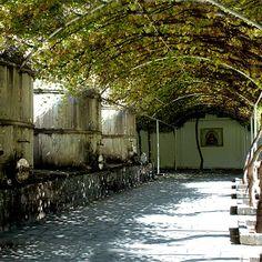 Casa Madero, Parras, Coahuila #vinomexicano #vino