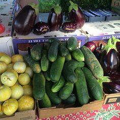 fruit salad healthy hidden valley fruit farm