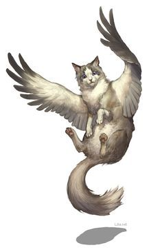 cat wings letters typography - Google Search