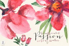 Aquarelle watercolor poppy red by GrafikBoutique on Creative Market