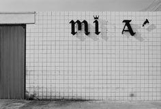 LA // photo: grant mudford