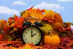 Enjoy your extra hour and have a wonderful weekend!