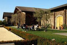 Clos Du Val Winery | Napa Valley Vineyards