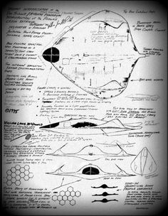 L'OVNI Contrairement aux autres OVNIs, celui de Roswell avait une forme différente, il ressemblait plus à une raie qu'a un disque traditionnelle. L'enveloppe qui été constituée d'un alliage mince de cuivre des plus fin et d'argent des plus pur recouvrait...