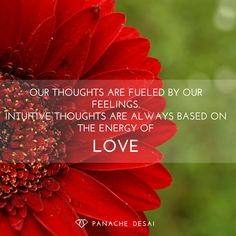 Our thoughts are fueled by our feelings. Intuitive thoughts are always based on the energy of LOVE. Be intuitive. Root all of your thoughts on the energy of LOVE. <3 #SoulSignature   - Panache Desai