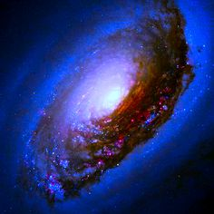 "The Black Eye Galaxy (also called Sleeping Beauty Galaxy; designated Messier 64, M64, or NGC 4826) was discovered by Edward Pigott in March 1779, and independently by Johann Elert Bode in April of the same year, as well as by Charles Messier in 1780. It has a spectacular dark band of absorbing dust in front of the galaxy's bright nucleus, giving rise to its nicknames of the ""Black Eye"" or ""Evil Eye"" galaxy."