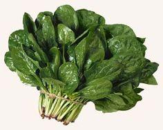 """Estas espinacas son necesarias para el relleno de los """"ravioli"""""""