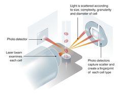 Laser flow cytometry diagram