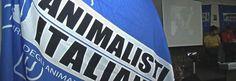 buongiornolink - Oggi grande concerto a Roma per i diritti degli animali