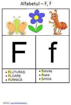 litera F - alfabetul ilustrat