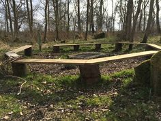 Forest School seating circle Forest School, Breath Of Fresh Air, Outdoor Furniture, Outdoor Decor, Plants, Texas, Home Decor, Wedding, Texas Travel