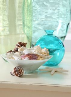 shells & vase...would like to introduce more blue glass this summer.