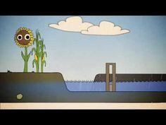 ▶ Schoon, Voldoende & Veilig Water - YouTube