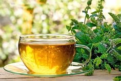 Can They Help You – Herbal Remedies