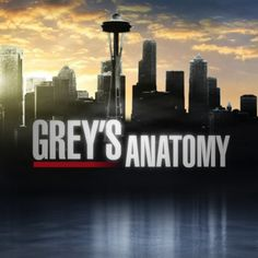 Grey's Anatomy. Probably the best TV show ever (well, it's second to ER).