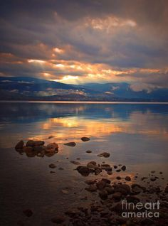 Morning Light On The Lake Photograph by Tara Turner