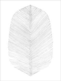 Magdalena Tyboni - White Feather Print (30x40cm)
