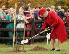 Queen Elizabeth II in The Queen Visits Newmarket Animal Health Trust