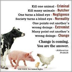 #vegan - Cerca su Twitter