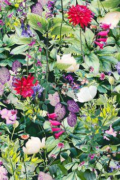 SEP | Garden | Colourway 2 © Shelley Steer