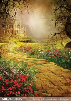 Yellow Brick Road Fairy Tale Backdrop (FD5102)