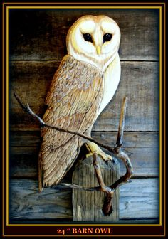 BARN OWL relief wood carving 25 inches high