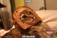 Lawl.. you will love this! Not the bread