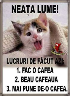Invitații haioase la cafea Morning Coffee, Good Morning, Morning Greetings Quotes, Sayings, Funny, Smile, Coffee Time, Good Day Quotes, Be Nice