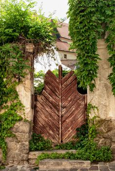 Szentendre, Hungary - beautiful wooden door/entry with ivy clad walls Old Doors, Windows And Doors, Heart Of Europe, Garden Park, Garden Doors, Unique Doors, New Earth, Perfect World, Budapest Hungary