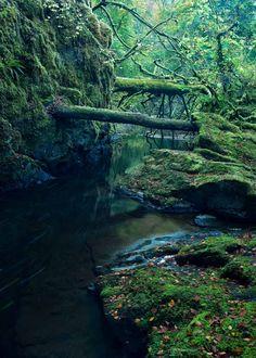 Narrows - Birks of Aberfeldy. Scotland