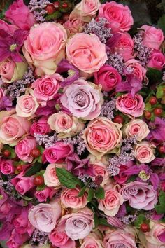 Photo about Wedding flowers: roses in various pastel colors. Image of purple, botanical, rose - 30288397 flowers roses Purple And Pink Roses Wedding Arrangement Stock Image - Image of decorative, bride: 30288397 Flowers Nature, Pretty Flowers, Colorful Flowers, Pink Flowers, Pastel Colors, Purple Roses, Bright Wedding Flowers, Cheap Wedding Flowers, Flower Bouquet Wedding
