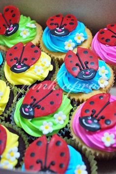 Ladybird cupcakes - simple, easy to prepare most in advance. Many colours with a ladybird theme.