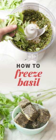 Check out this easy tutorial that teaches you How to Freeze Basil for a blast of fresh summer flavor that lasts all year round. Stock up on basil during the gardening months so you have plenty preserved for recipes throughout year! Basil Recipes, Vegan Recipes, Cooking Recipes, Italian Recipes, Freezer Cooking, Freezer Meals, What's Cooking, Freezing Basil, How To Freeze Basil