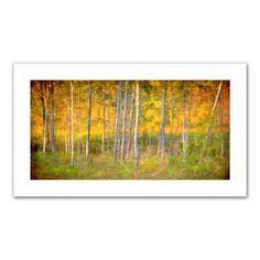 Into the Wood' by Antonio Raggio Photographic Print on Canvas