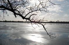 Damhus lake