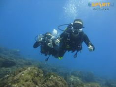 www.divingspirit.es #EspiritudeBuceo #Padi5StarDiveCentre #PadiDiveCentre #AqualugPartnerCentre #DivingSpirit #Padi #Aqualung #Apeks #DanEurope #AxaSub #tripadvisor #Buceo #Scuba #Dive #Diving #ScubaDiving #SnorkelTrips #Snorkeling #DiscoverScubaDiving #Bubblemaker #PuertodeSantiago #LosGigantes #PlayadeLaArena #Tenerife #Canaries #CanaryIslands #Canarias #IslasCanarias #spain #españa