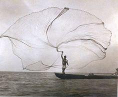 La red o el pavo real del mar, 1939