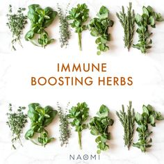 𝗦𝘂𝗽𝗲𝗿 𝗛𝗲𝗿𝗯𝘀 are one of my favorite ways to boost immunity and nourish the body! I love topping off dishes with fresh herbs from my garden and making homemade pesto with these healthful and antioxidant-rich aromatic plants. Eating a wide variety of herbs also creates a diverse and healthy microbiome, which is directly linked to your immune system and stress response. Try adding some of these 𝗦𝘂𝗽𝗲𝗿 𝗛𝗲𝗿𝗯𝘀 into your diet: 1. Mint 2. Rosemary 3. Basil 4. Parsley 5. Dill