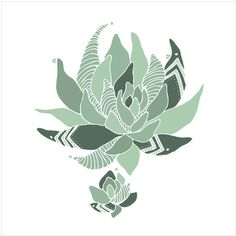 Dot & Bo Succulent Print ($16) ❤ liked on Polyvore featuring home, home decor, wall art and succulent wall art