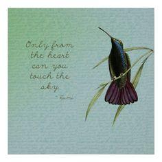 Humming bird quotes thoughts 56 Ideas for 2019 Silence Quotes, Rumi Quotes, Nature Quotes, Inspirational Quotes, Qoutes, Positive Quotes, Quotations, Motivational Quotes, Hummingbird Quotes